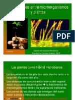 PDF Para El Trabajo