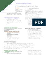 Sistema Inmune e Infeccione1
