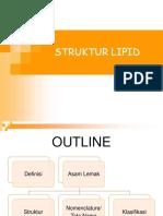 Struktur Dan Klasifikasi Lipid