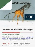 Entomologia Agricola aula 3