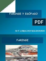 faringe y esofago 2012