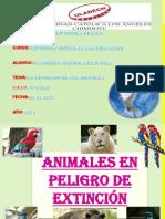 EXTINCIÓN DE LOS ANIMALES
