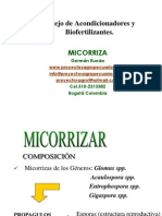 MICORRIZA