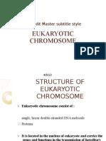 Eukaryotic Chromosome Presentation