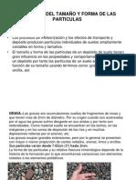 Defi.Tamaño yForma de ParticulasPAC-011-(01)