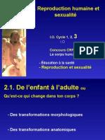Chapitre 2_reproduction Humaine_partie 3-Site WEB