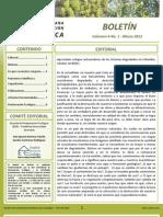 Boletin REDCRE Vol 6 No 1