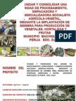 Presentacion PROYECTO Product or A, Clasificadora Procesadora y Comercializadora Agricola