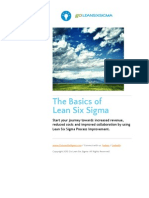 The Basics of Lean Six Sigma - Www.goleanSixSigma