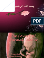 The Powers in Normal Labour1