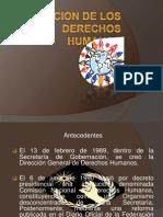 La Comicion de Los Derechos Humanos