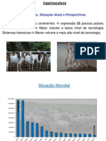 1a Aula - Situação Caprinocultura 2012 2