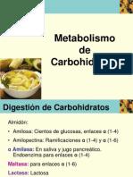 12.1 Glicólisis