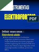 Elektrophoresis Protein