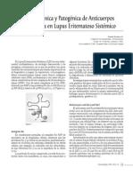 Importancia Clinica Patologica Anticuerpos AntiRo AntiLa