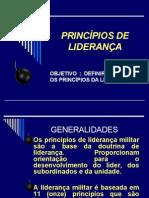 3 - Princípios da liderança