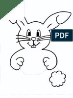 Bunny Template
