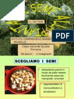 Dal Seme Alla Pianta Classe 2a Barberino