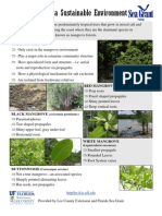 Mangroves and a Sustainable Environment