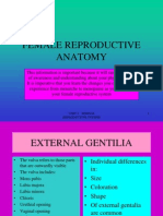 Female Reproductive Anatomy-1