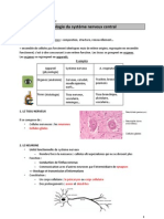 Histologie_SNC