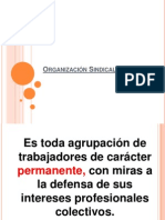 Organización Sindical2