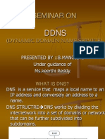 419 Dynamic Domain Name Service