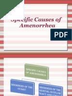 Specific Causes of Amenorrhea