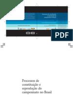 Processos_de_constituição_e_reprodução_do_campesinato_no_Brasil
