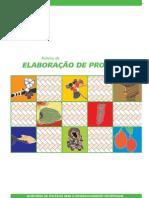 Roteiro Elaboracao Projetos Cex 65
