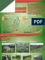 Agricultura Ecologica Actividad 1desarrollo Ok