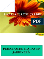 plagas_comunes