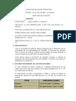 Informe Técnico de Inspección Ocular de Estructura-Local COFOPRI-LA MOLINA