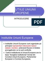 Curs Institutiile UE[1]