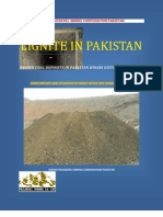 Lignite Coal Pakistan Kingri