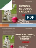 villamontejulianacriquet-100405144400-phpapp01