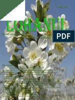 Lohanul_Nr_21