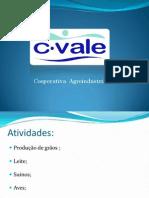 C. Vale Slides