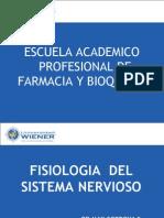 Fisiologia Del Sistema Nervioso-1 2010-II m