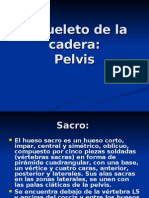 esqueletodelacadera-090629213040-phpapp02