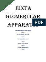 Juxta Glomerular Apparatus