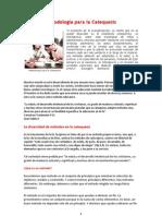 564_metodologia Para La Catequesis