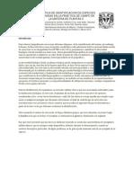 Practica de Identificacion de Especies Obtenidas en La Practica de Campo de La Materia de Plantas II