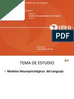 Cbi 340 Clase 2 Modelo Psiconeurologicos Del Lenguaje