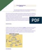Ciclos Biogeoquímicos.docxs