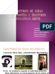 trastornodeliranteypsicoticobreve-101024222639-phpapp02