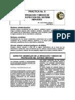 Formato Practica Irrigación 2012