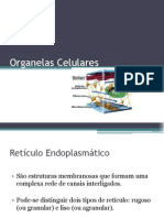 Organelas Celulares