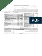 Formulario 110 DR 2010 Con Anexos Basico