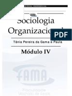 sociologia_organizacional_md4